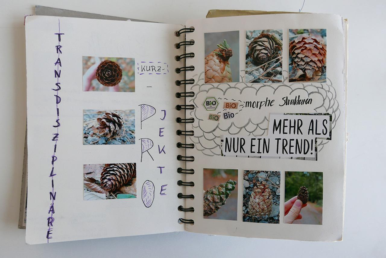 Katapult_Skizzenbuch_054